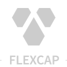 Official Website of FLEXCAP Energy